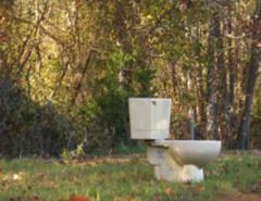 toilet-in-woods2